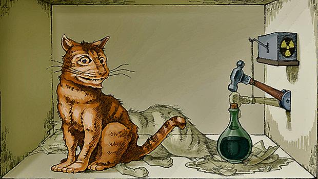 912_Schrödingers-Cat-3