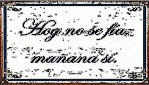 1427_HoyNoSeFia
